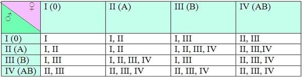 Определение группы крови и резус фактора
