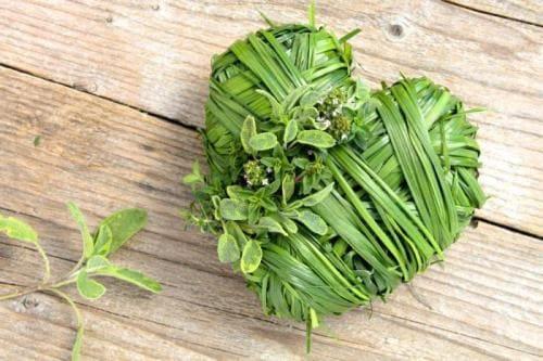 Как избавиться от атеросклероза сосудов сердца и головы: причины заболевания и лечение