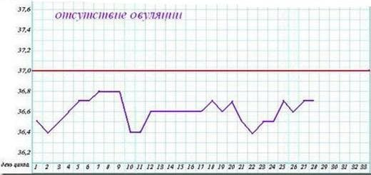 Измерение базальной температуры (БТ). Правила. Расшифровка ...