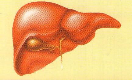 Симптомы и лечение холецистита